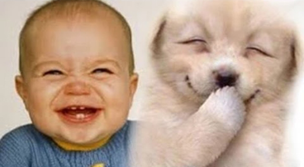 Babies-Laughing-At-Dogs